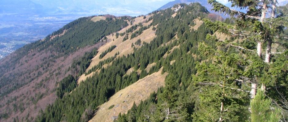 Greben Kriške gore iz Prižnice